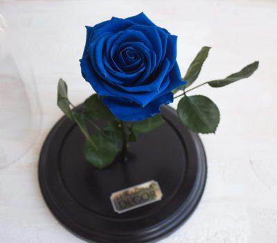 Синие розы и свадебный букет с синими розами в TURAGINA DECOR