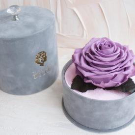 Стабилизированные-розы-брендовая-упаковка
