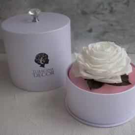 Стабилизированная роза в брендовой упаковке