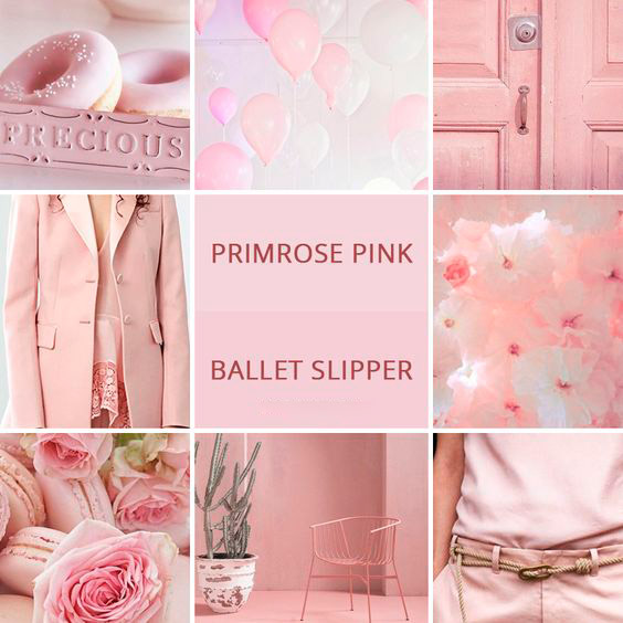 Ballet-Slipper-pantone-color-2018