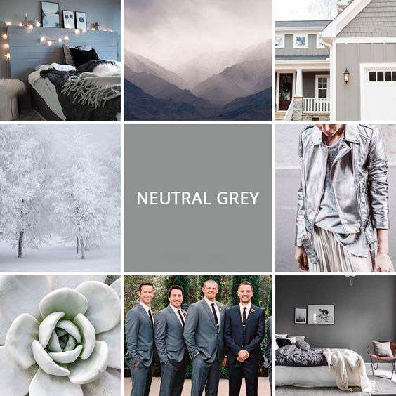 Neutral-Gray-pantone-color-2018