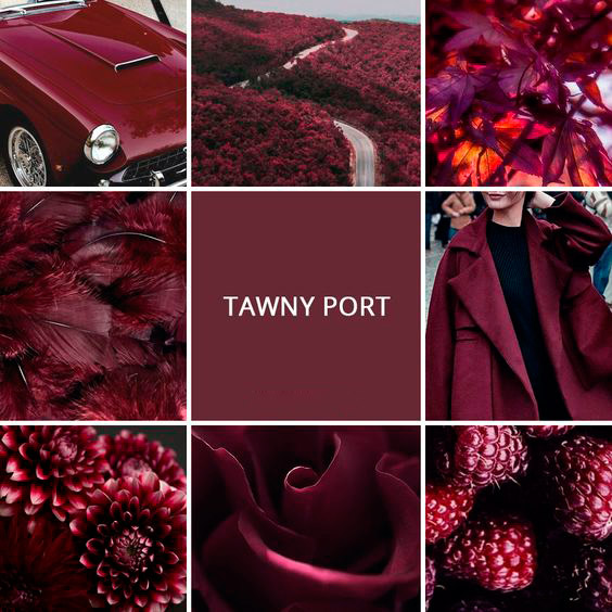 Tawny-Port-pantone-color-2018