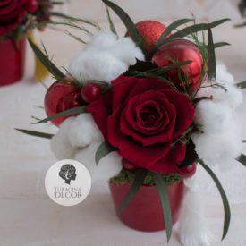 Розы и хлопок