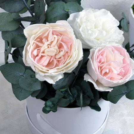 как раскрыть розу