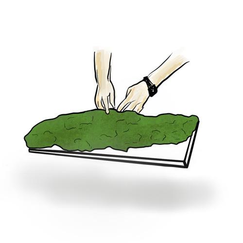 Как-сделать-стену-из-плоского-мха