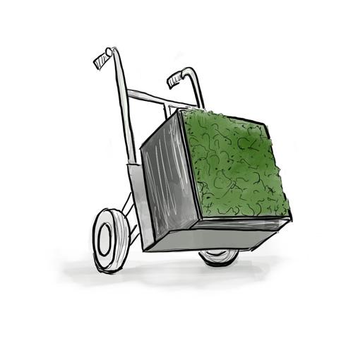 Как-транспортировать-стену-из-мха