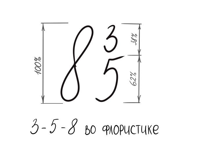 3-5-8-во-флорстике