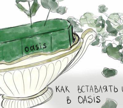 Правильная расстановка растений в оазис