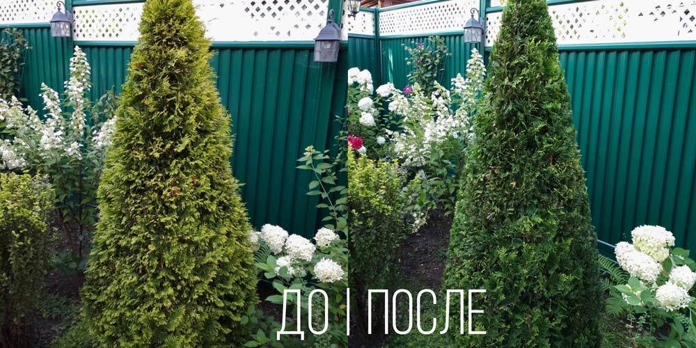 Постричь-тую-Иваново