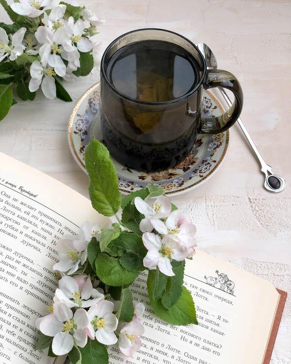 Цветы-яблони-и-книга-красивое-фото