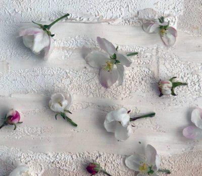 Как красиво оформить инстаграм с цветами