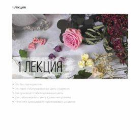 1-лекция-Курс-по-стабилизрованным-цветам