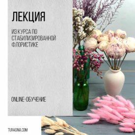 Лекция-из-курса-флористики-по-стабилизированным-цветам